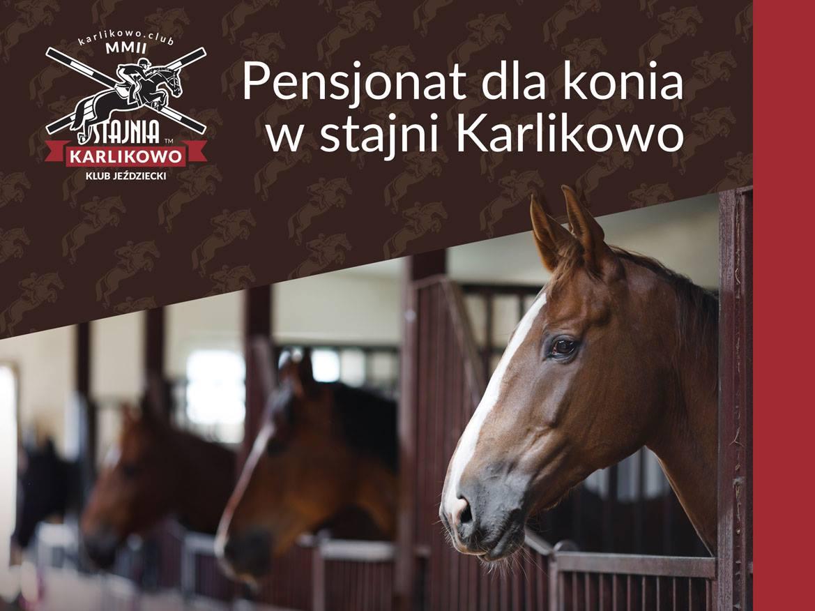 Pensjonat dla konia