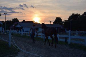 zachód słońca karlikowo